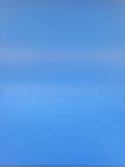 1x Schneidbrett50x40x3cm. aus Qualitätskunststoff Blau