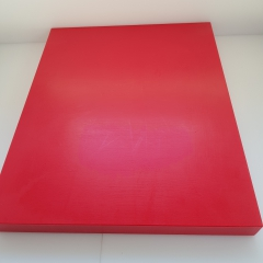 1x Schneidbrett40x30x3cm. aus Qualitätskunststoff Rot