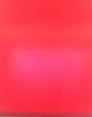 1x Schneidbrett45x40x4cm. aus Qualitätskunststoff Rot